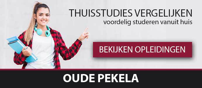 opleidingen-en-cursussen-pekela