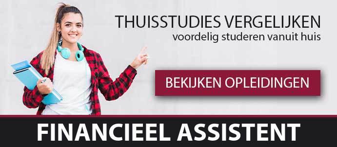thuisstudie-cursussen-financieel-assistent