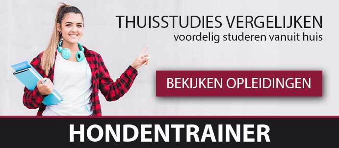 thuisstudie-cursussen-hondentrainer