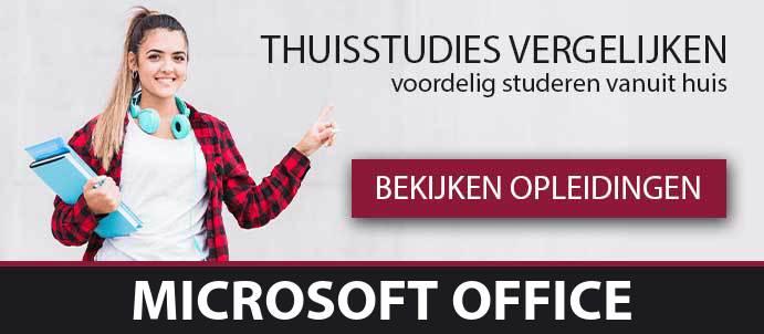 thuisstudie-cursussen-microsoft-office