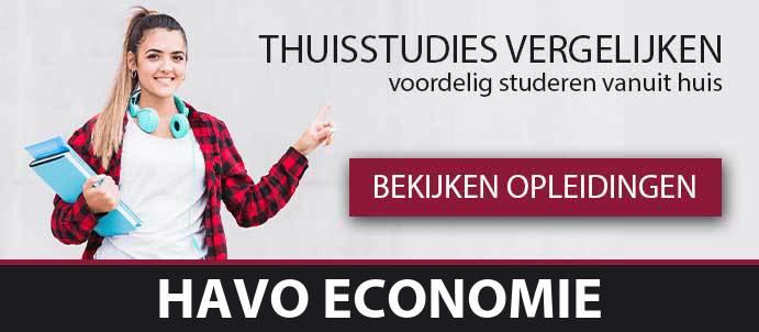 thuisstudie-voortgezet-onderwijs-havo-economie